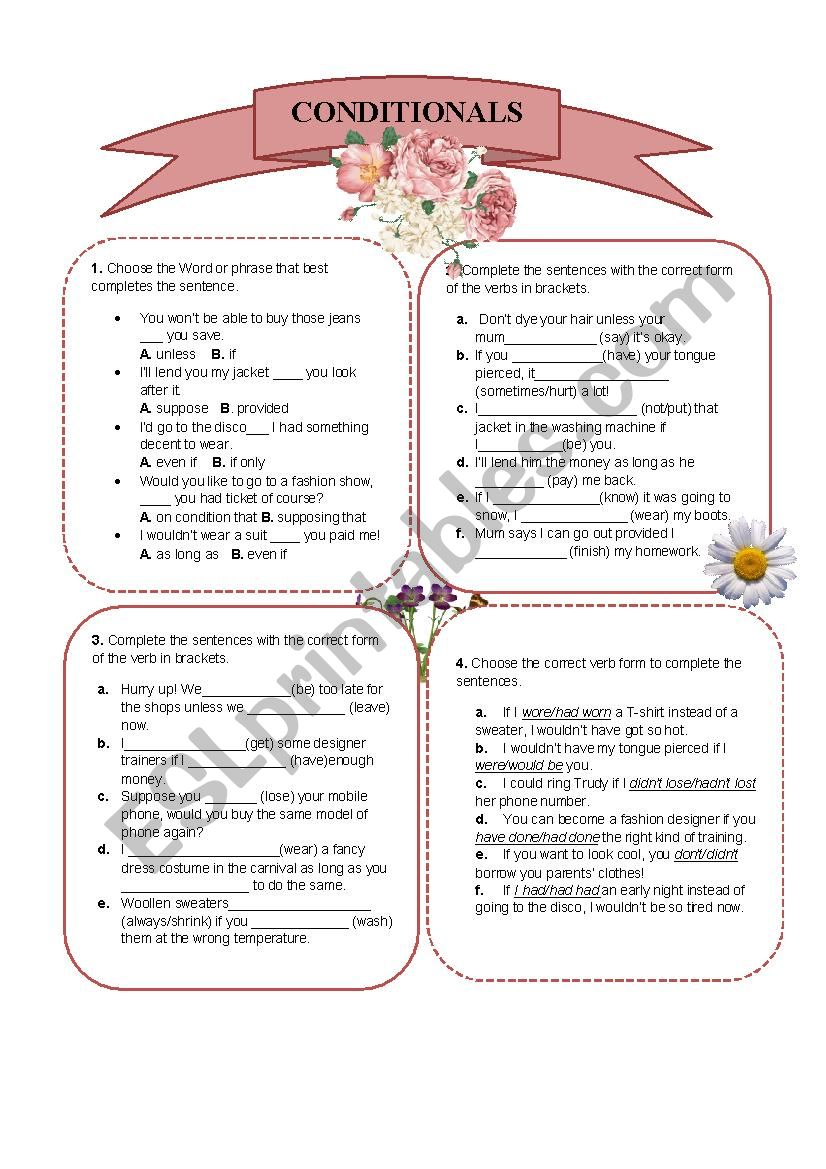 Conditional Sentences Worksheet.