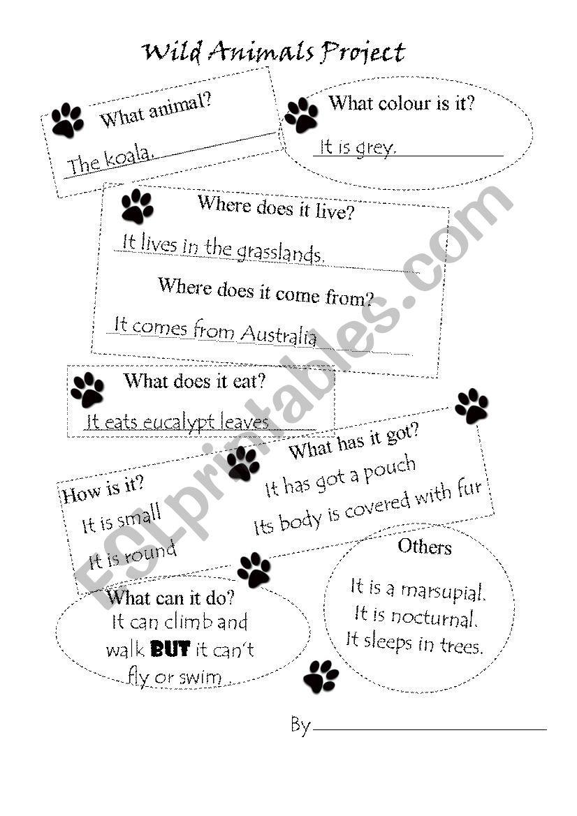 Wild Animals Project worksheet