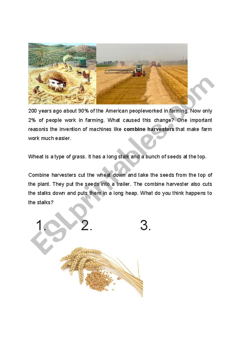 Combine Harvester Reading Jigsaw