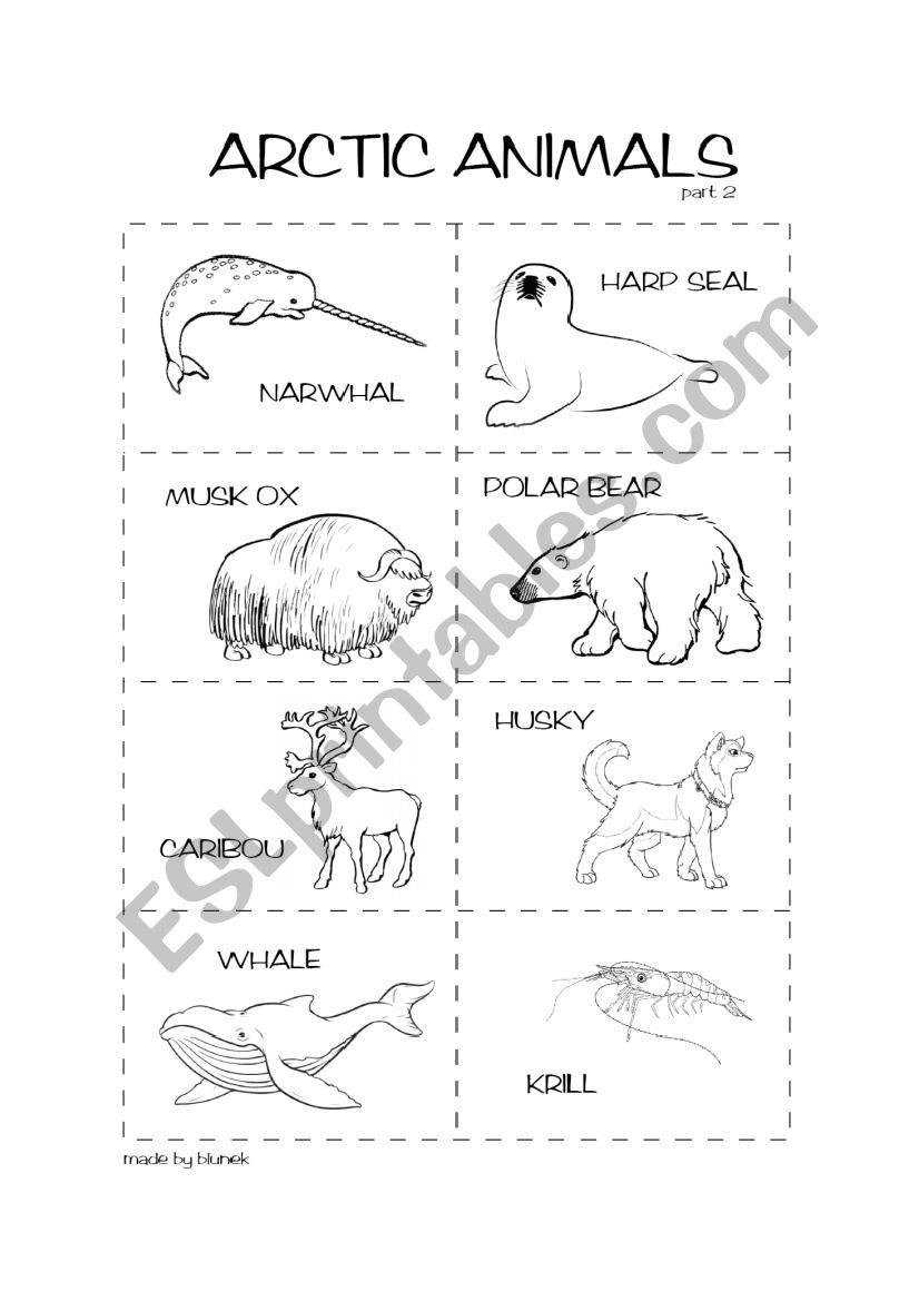 Arctic animals 2/2 - ESL worksheet by blunek