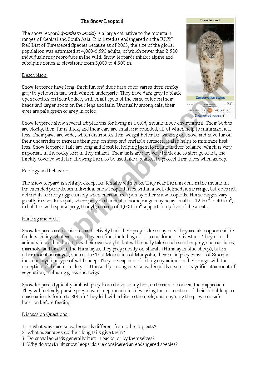 Snow Leopard, reading and class discussion