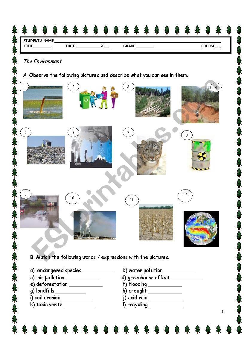 The Environment. worksheet