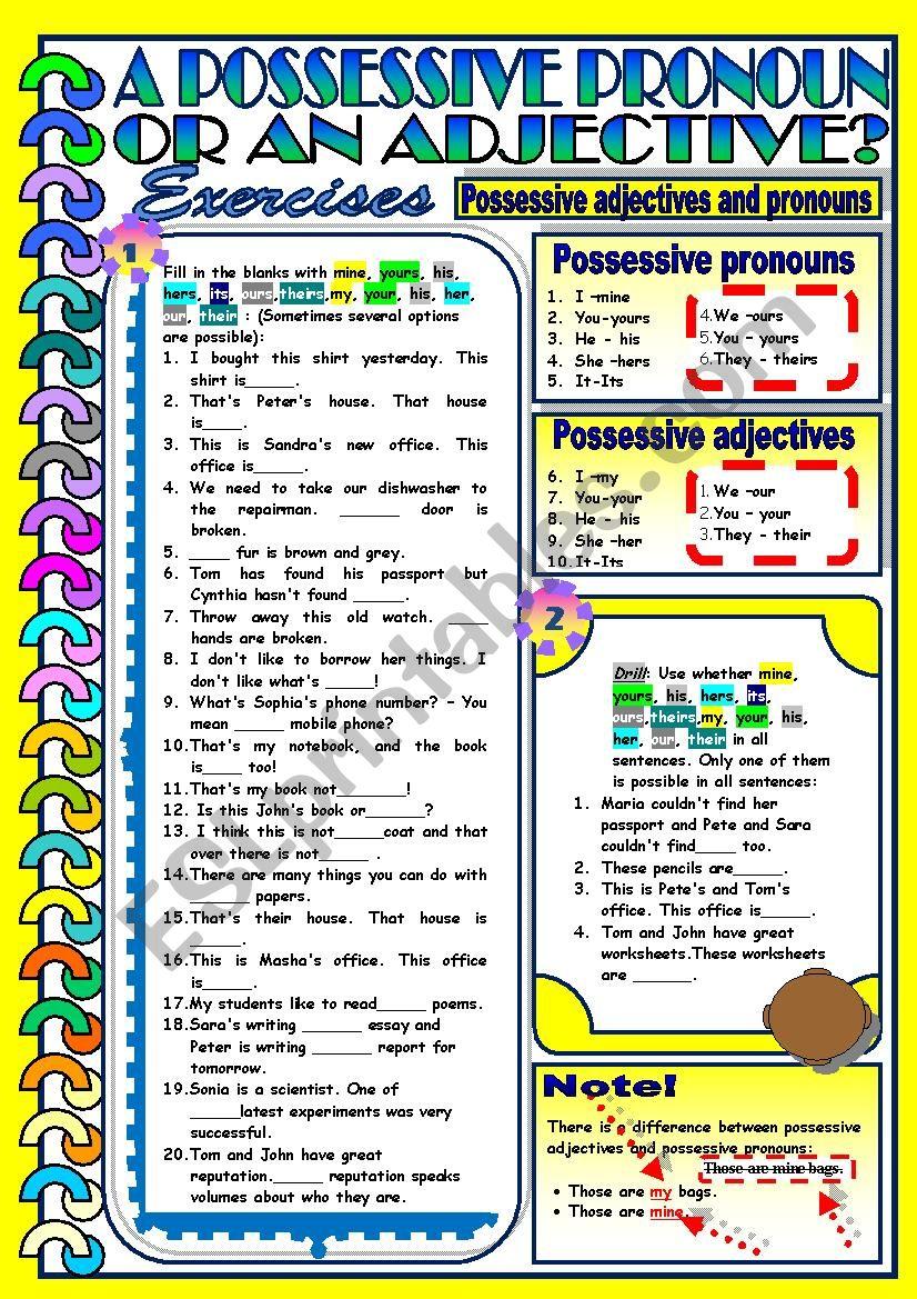 Possessive Pronouns and Adjectives