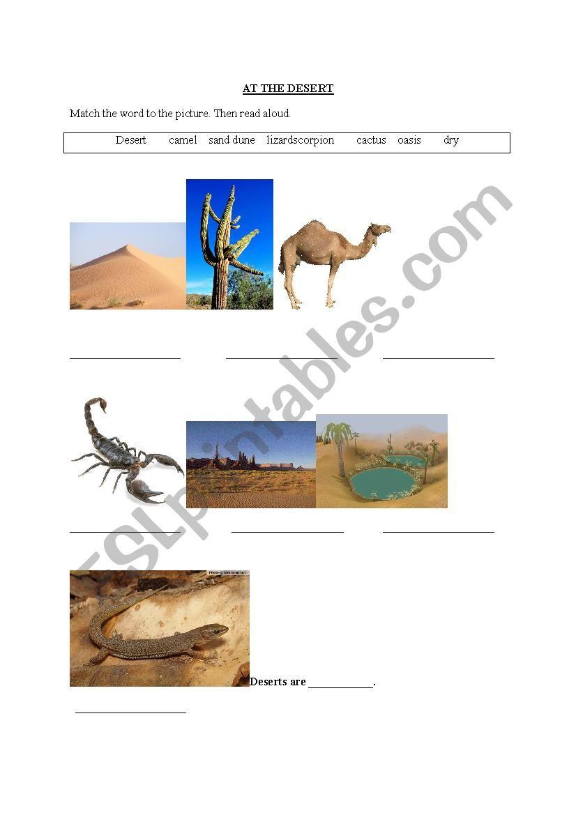 At the Desert worksheet