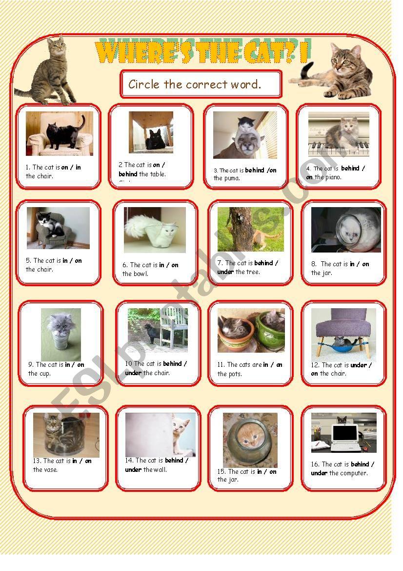 Where´s the Cat 1 worksheet