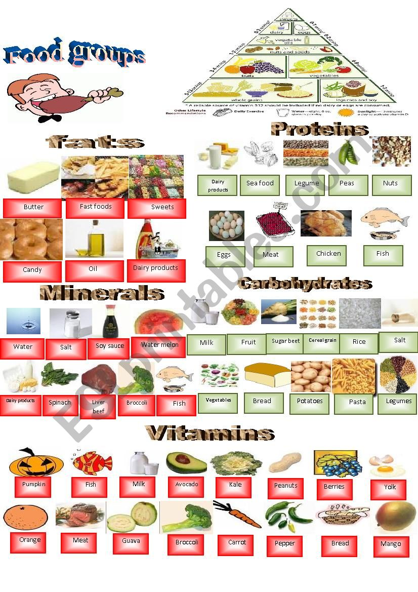 Food groups Dictionary  worksheet