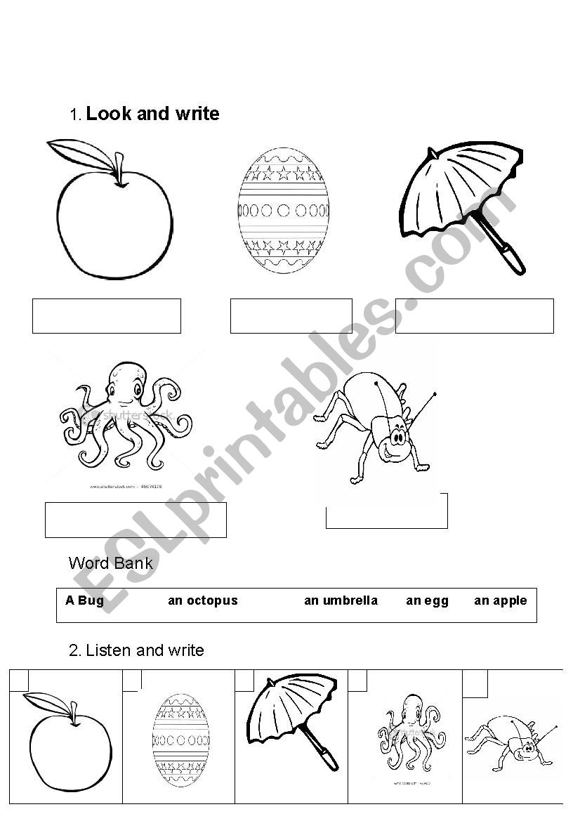 Write The Words Under The Pictures Esl Worksheet By Vantran3181