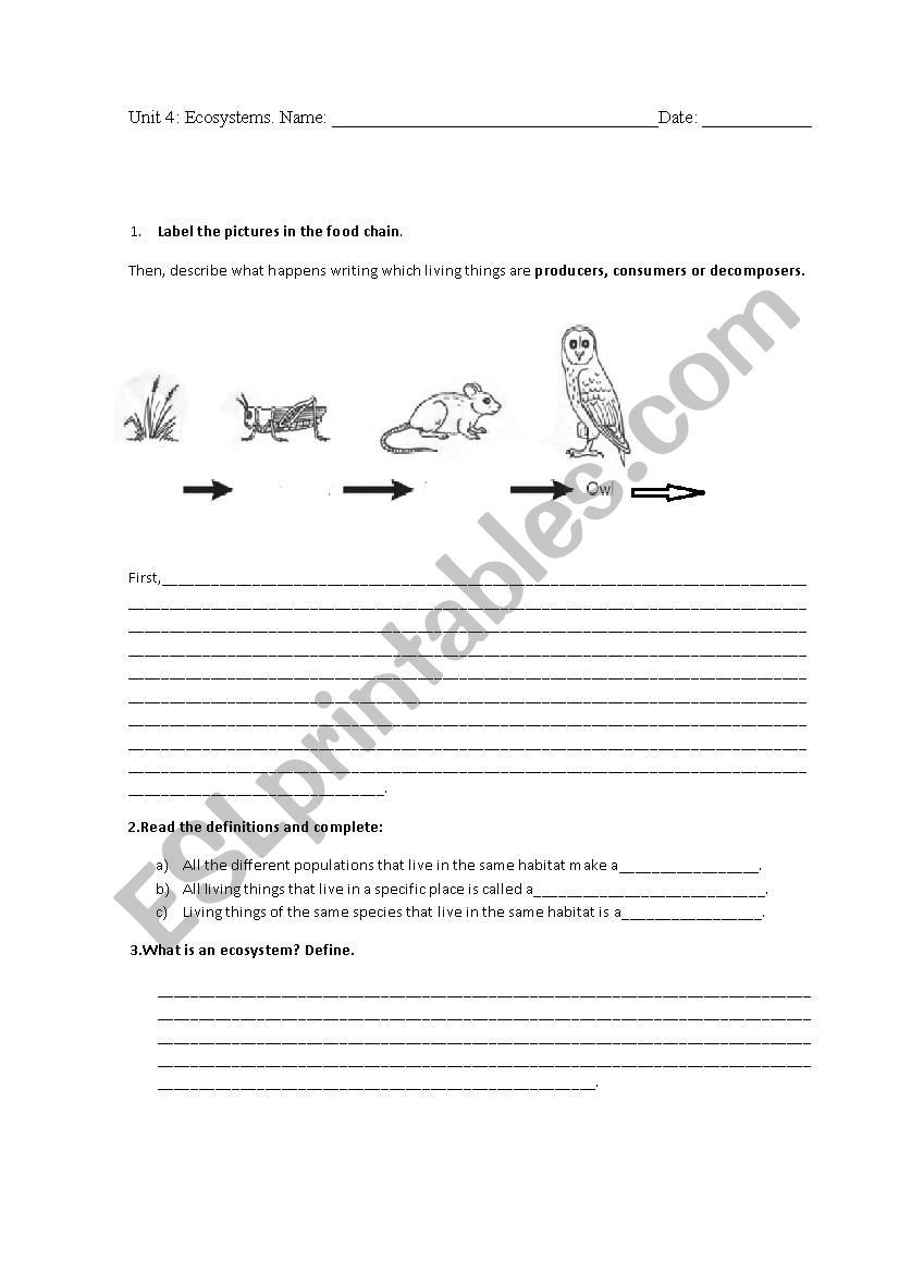 English Worksheets Ecosystems Test 4th Grade