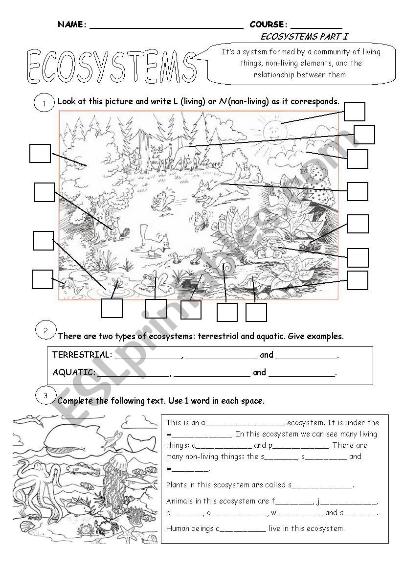 Worksheet Ecosystems Worksheets ecosystems part 1 esl worksheet by cristina84