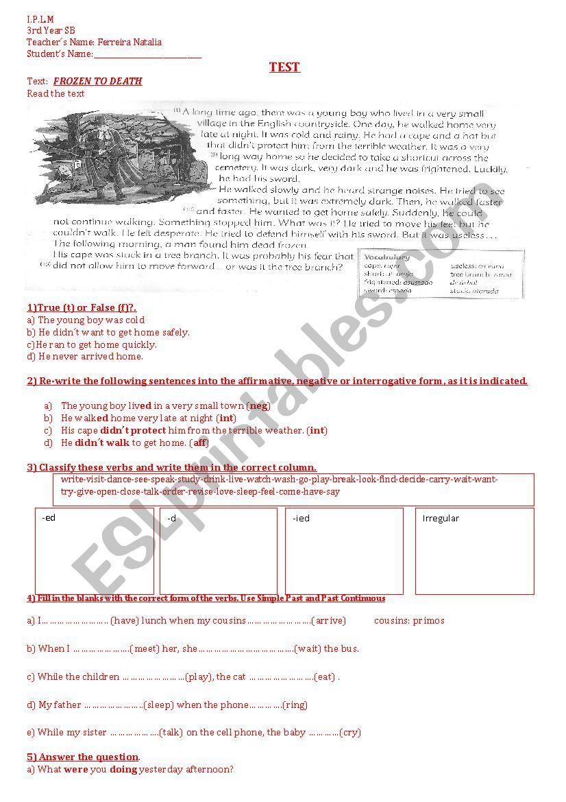 Test Simple Past  worksheet