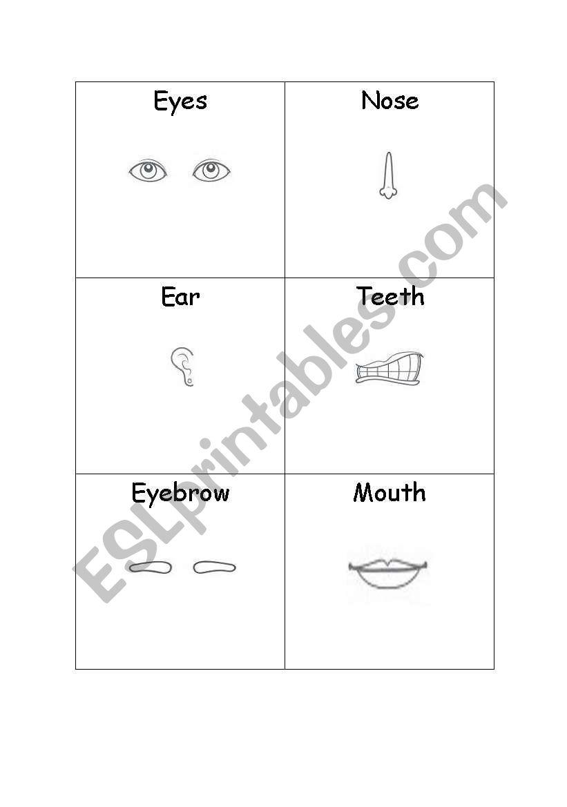 face - activity 2 worksheet