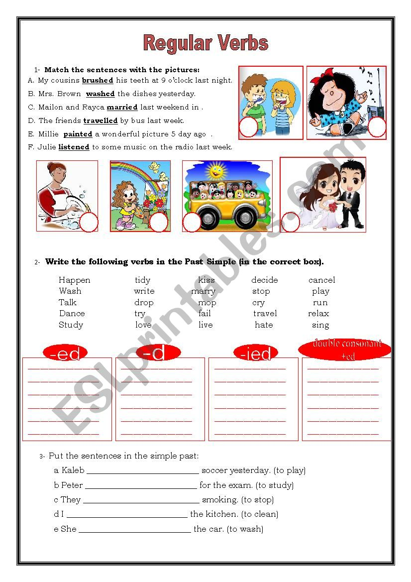 Regular Verbs worksheet