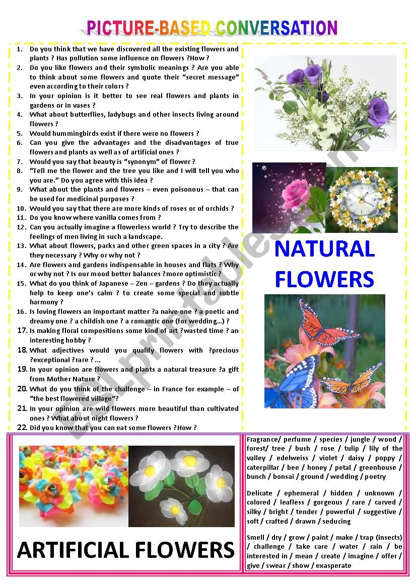 Picture-based conversation : topic 84 - Natural flowers vs artificial ones.