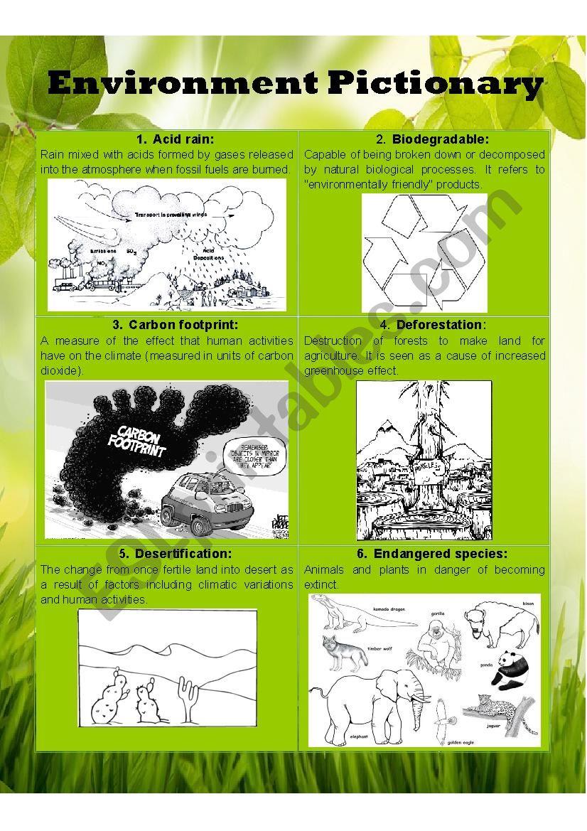 Environment Pictionary Part I worksheet
