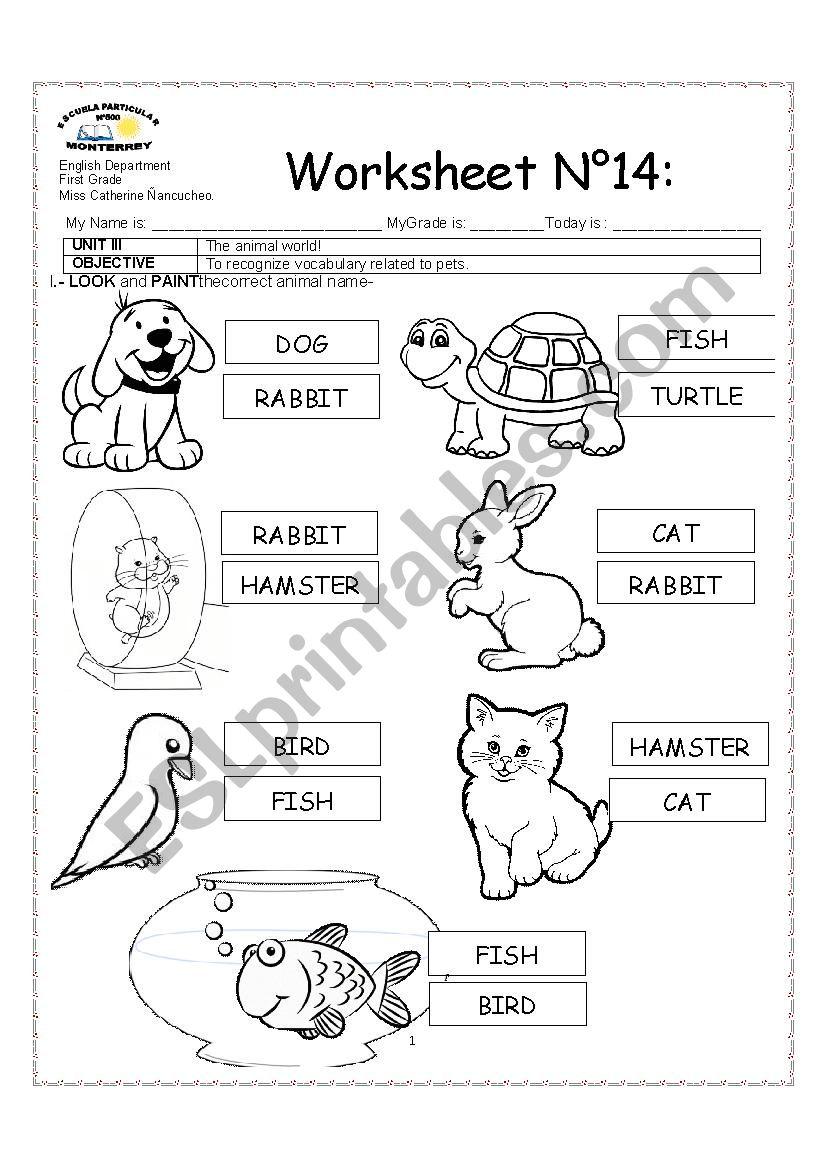 PETS - ESL worksheet by katieeeee