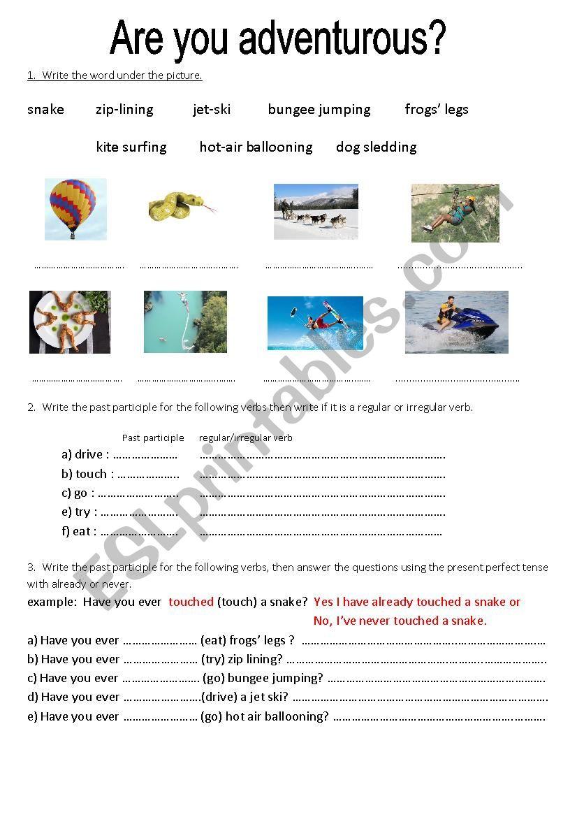 Are you adventurous? worksheet