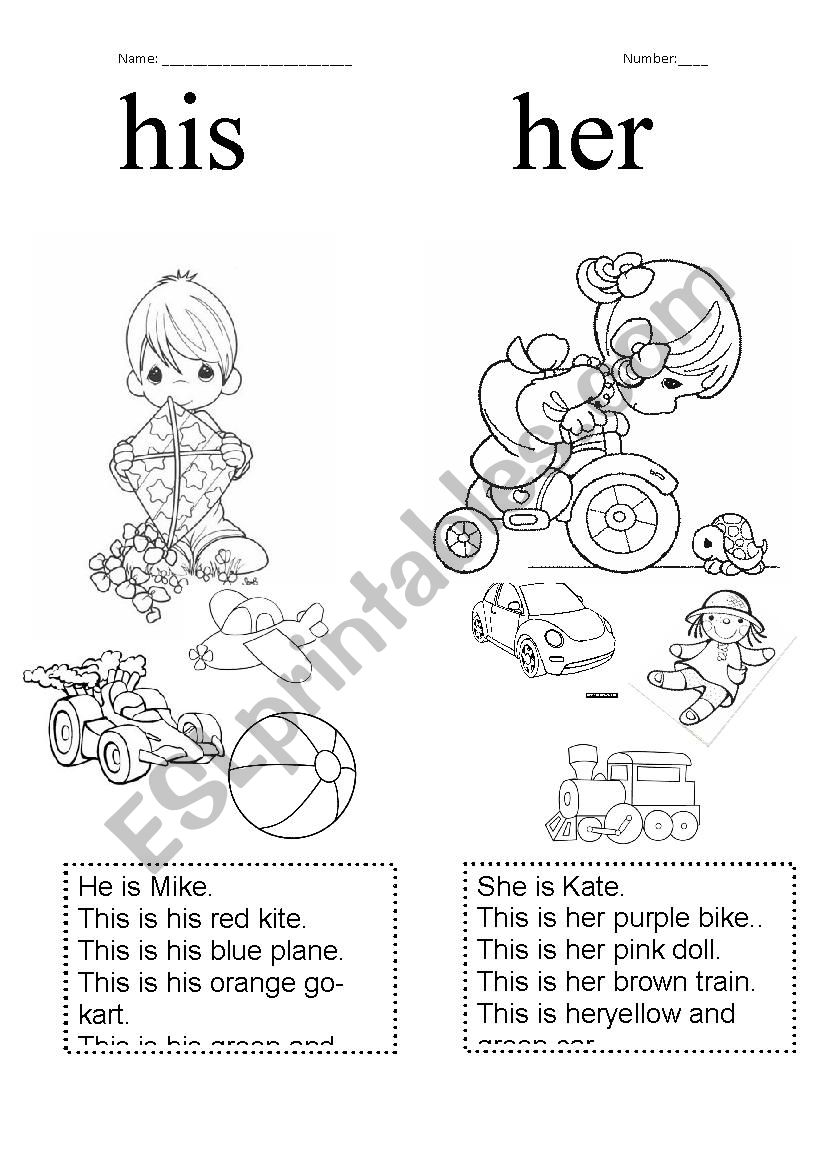 His/her worksheet