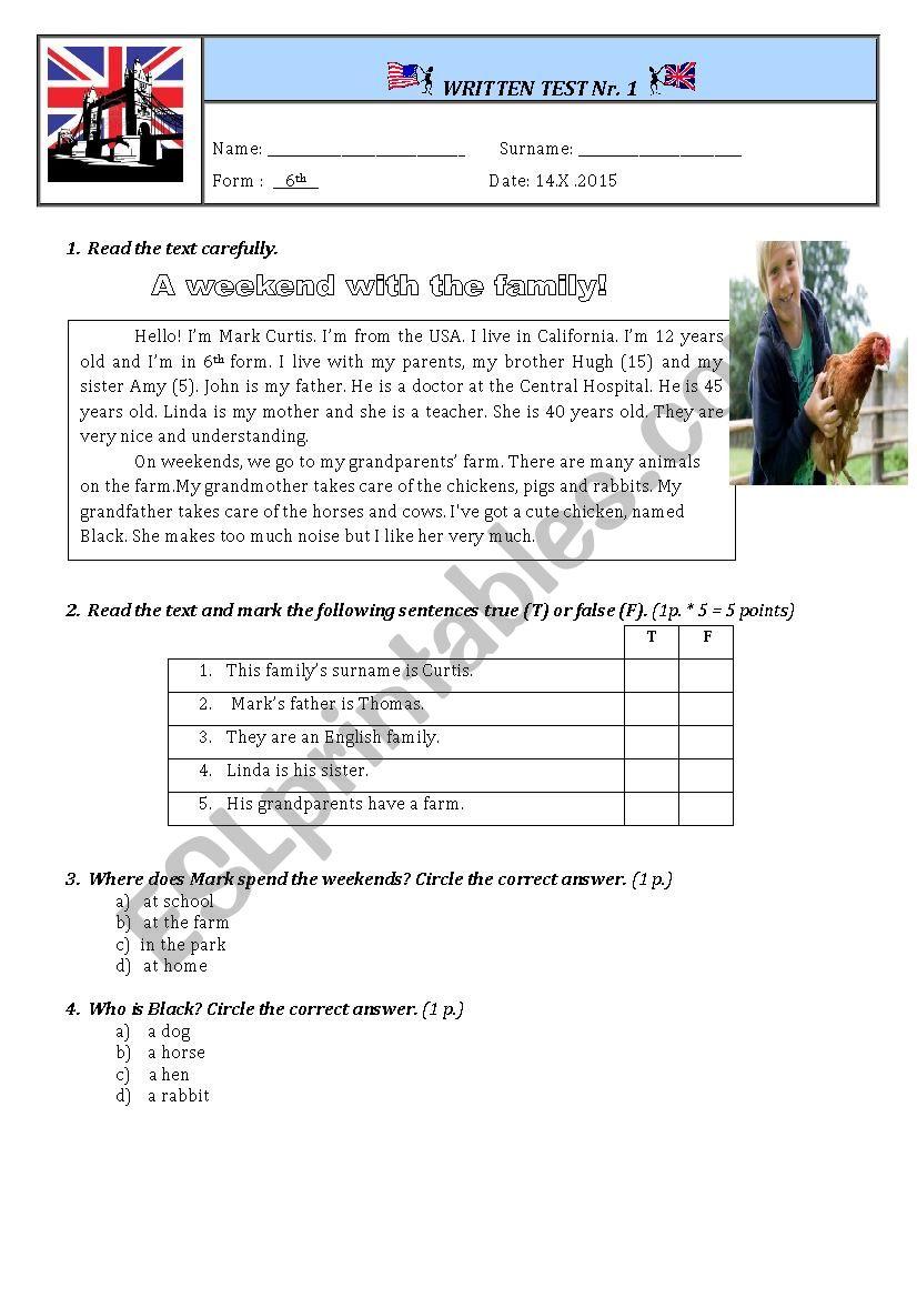 Test Paper Unit 1 Grade 6th - ESL worksheet by Sandu2006