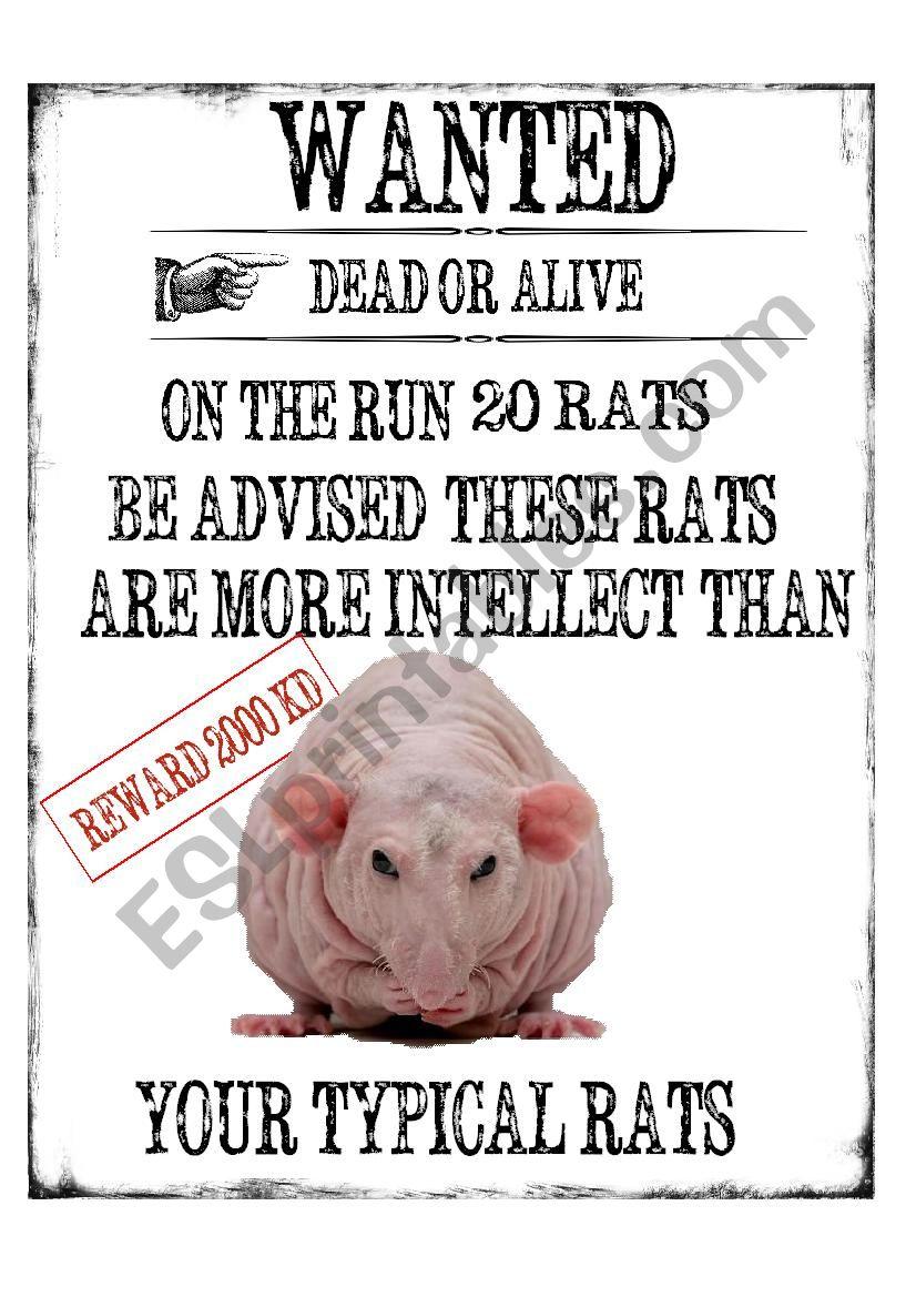 Rats worksheet
