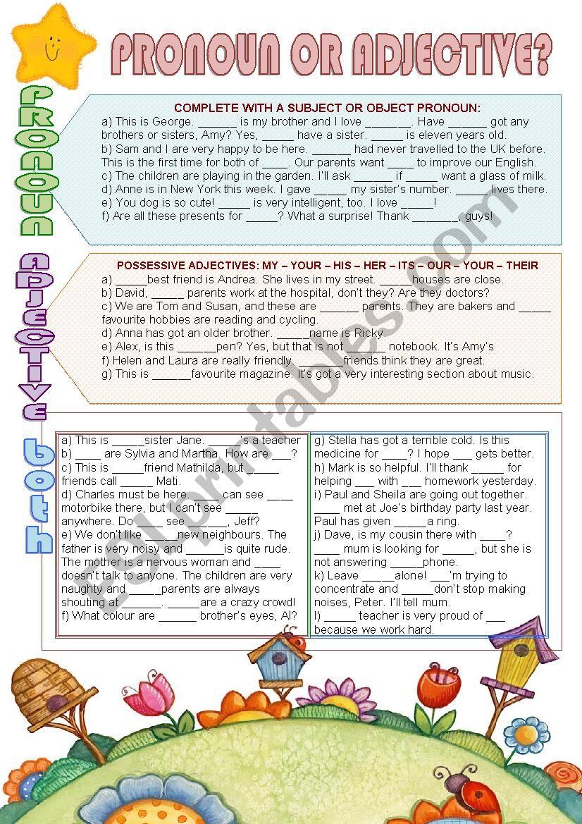 Pronoun or adjective? worksheet