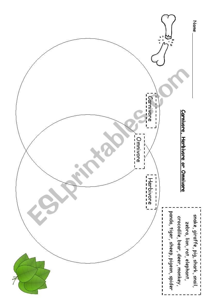 2 FREE ESL herbivore worksheets additionally Herbivore Carnivore Omnivore Worksheets Grade Carnivores Herbivores together with  besides 4th carnivores herbivores omnivores furthermore Herbivore Worksheets For First Grade   Free Printables Worksheet together with parative Anatomy Worksheet Jerseys Of Carnivore Herbivore further 4th carnivores herbivores omnivores likewise  in addition Carnivores Herbivores And Omnivores Worksheets The best worksheets furthermore Carnivores Herbivores And Omnivores Worksheets Carnivores Herbivores in addition Carnivores Herbivores And Omnivores Worksheets  paring Task Cards together with  together with Herbivores  Carnivores  Omnivores besides Carnivore  Herbivore or Omnivore   ESL worksheet by TreeofLight in addition Carnivore Herbivore Omnivore And Food Chain 8 Being Great With Bates also Carnivore  Herbivore or Omnivore  Worksheet   Studyladder. on carnivores herbivores and omnivores worksheets