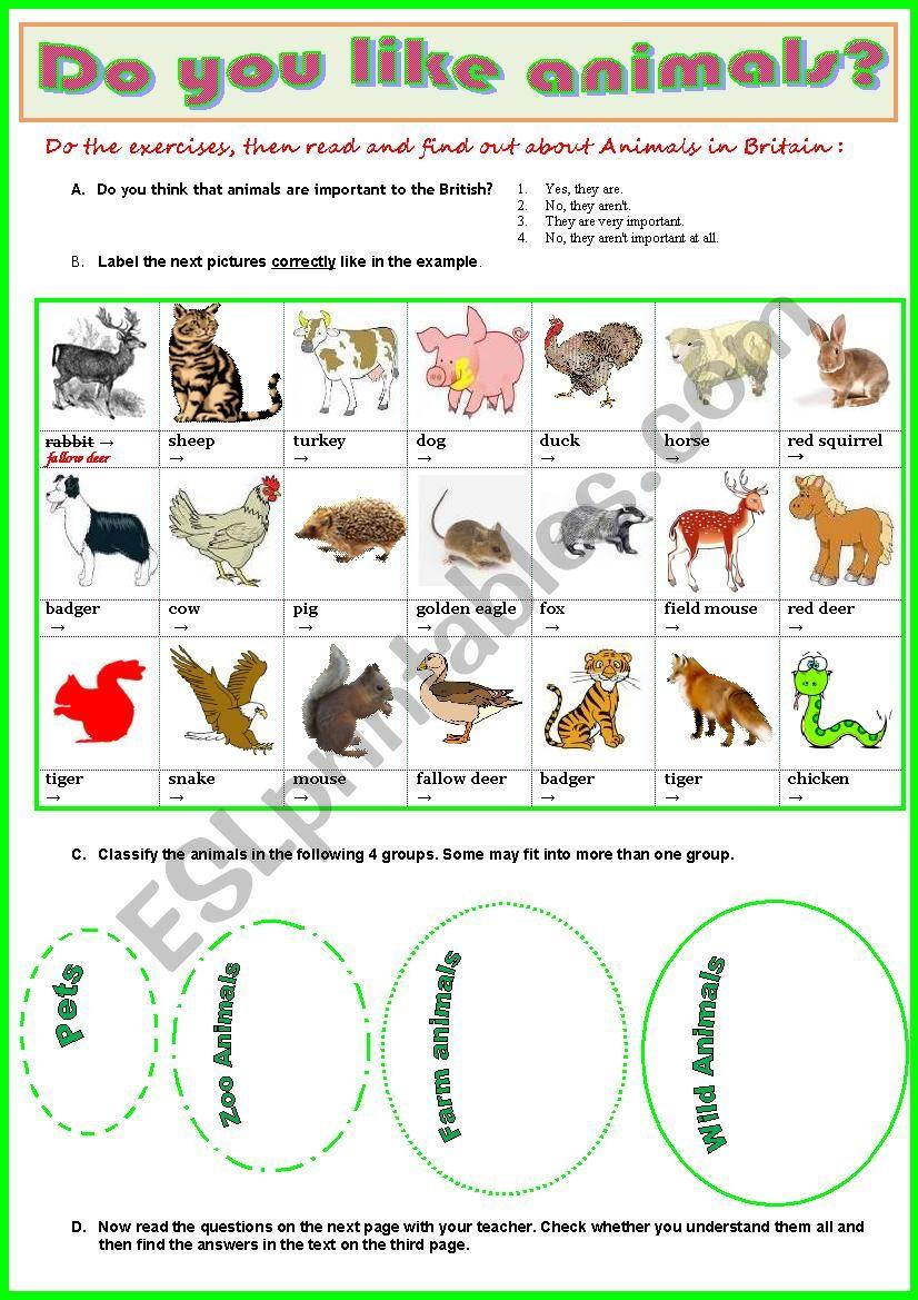 Animals in Britain  -  Reading + vocabulary exercises + Key