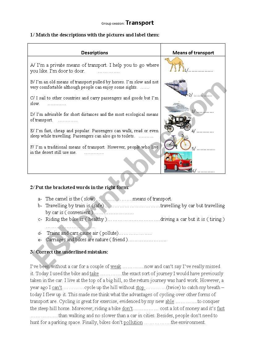 group sessio Transport worksheet