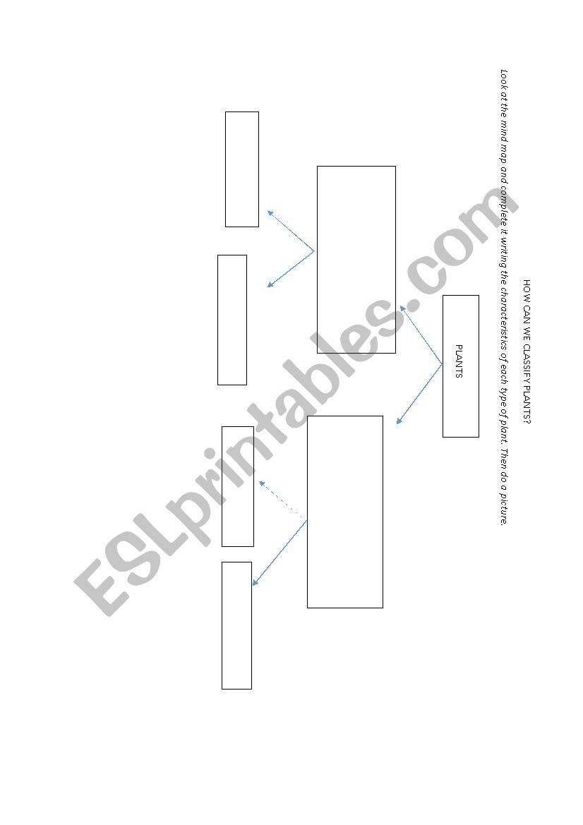 PLANTS CLASSIFICATION DIAGRAM worksheet
