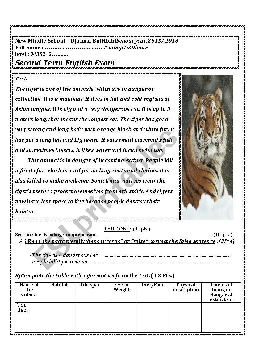 the tigers worksheet