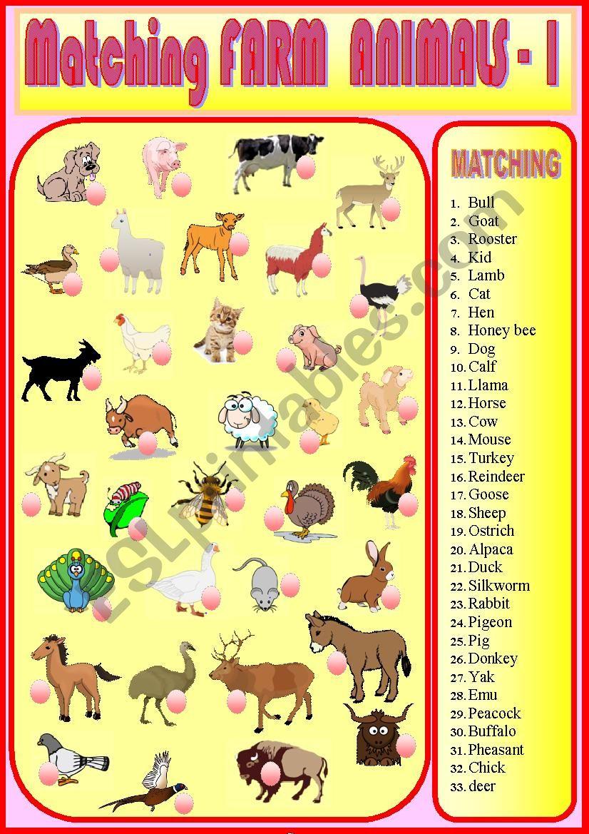Matching Farm Animals 1  worksheet