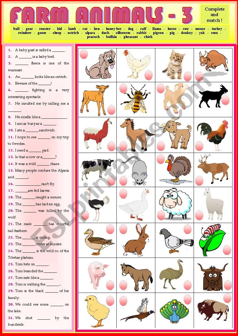 Match the sentences with the Farm Animals 3