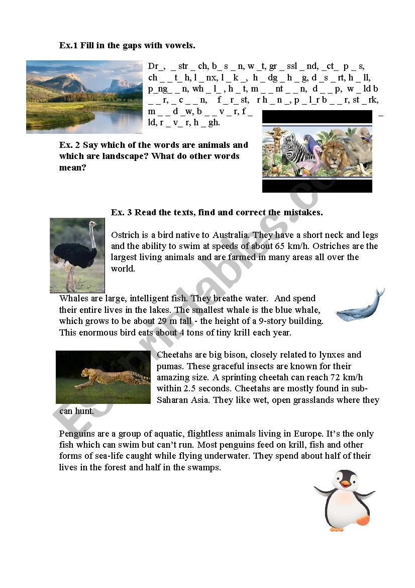 Animals Landscape Word Study Esl Worksheet By Rio Ve Lana