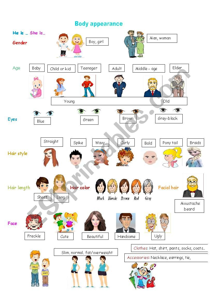 Body appearance worksheet