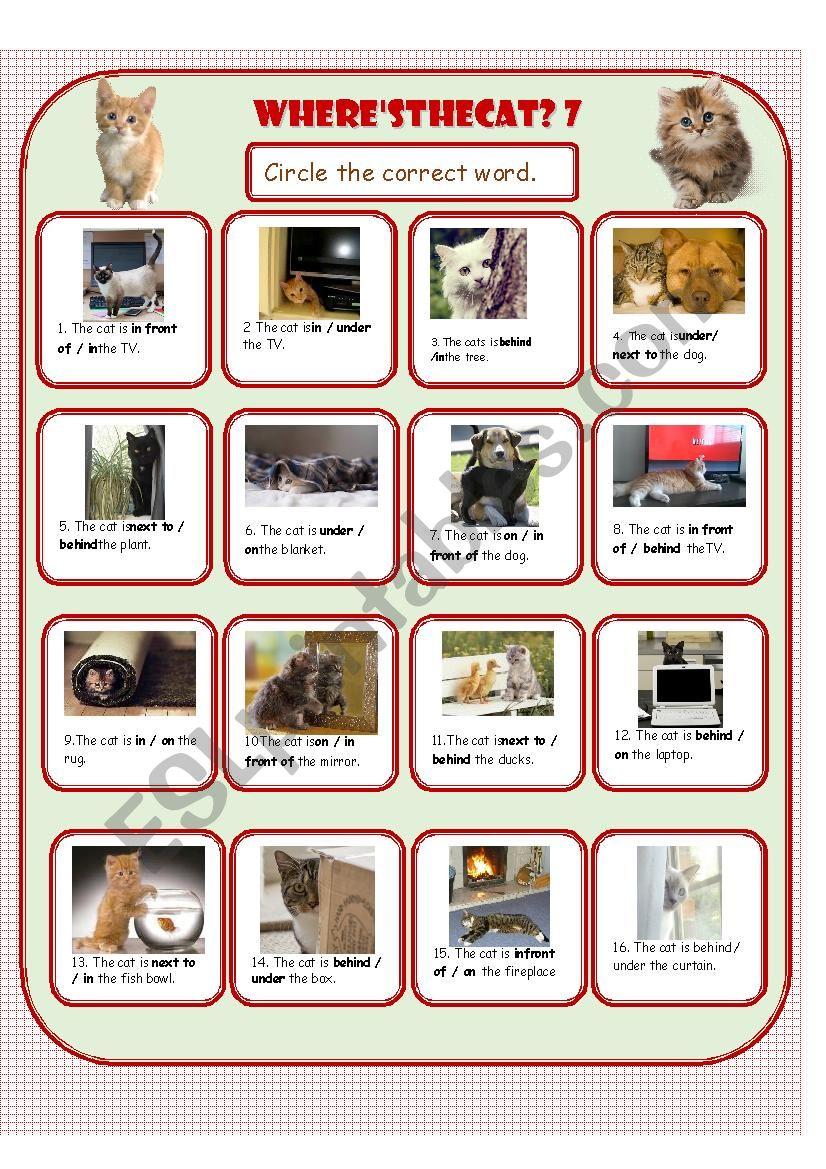 Where´s the Cat? 7 worksheet