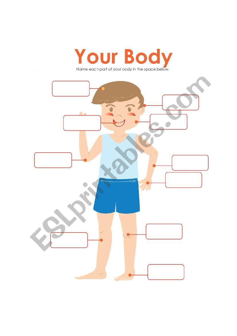 Parts human body - ESL worksheet by tithi