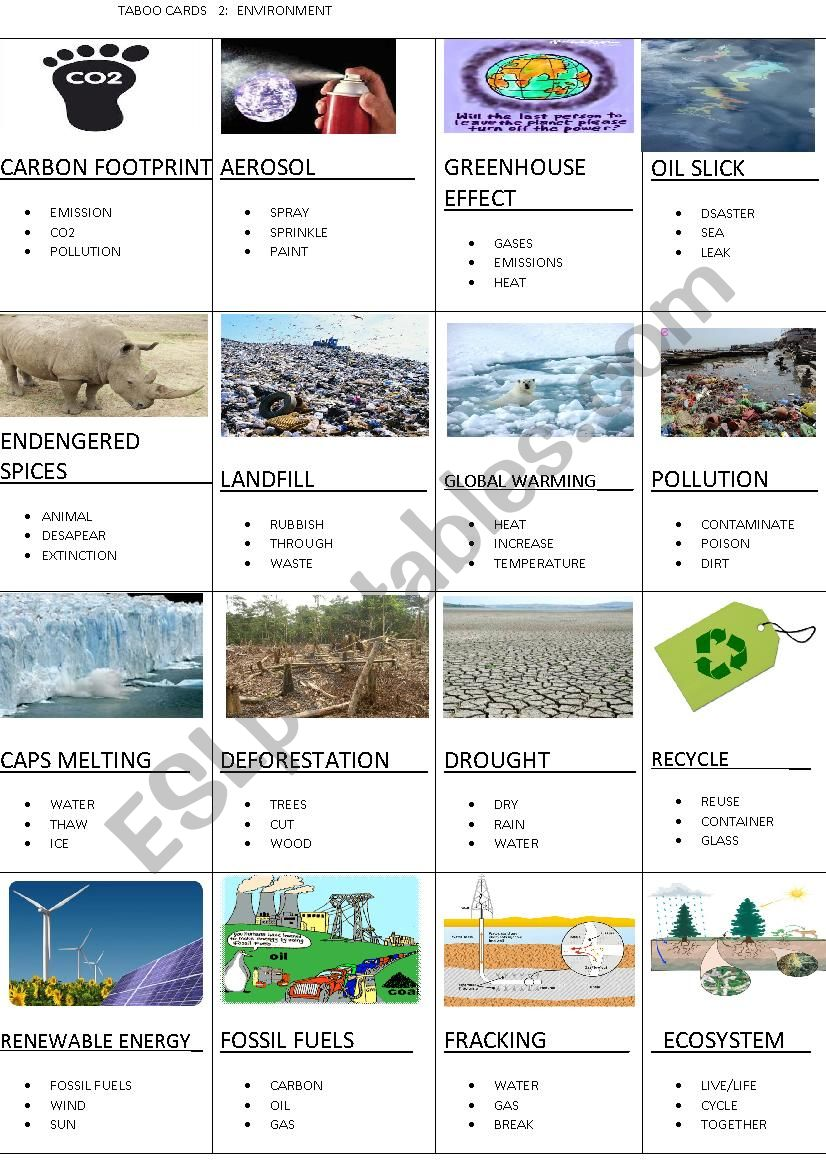 TABOO CARDS 2: ENVIRONMENT worksheet