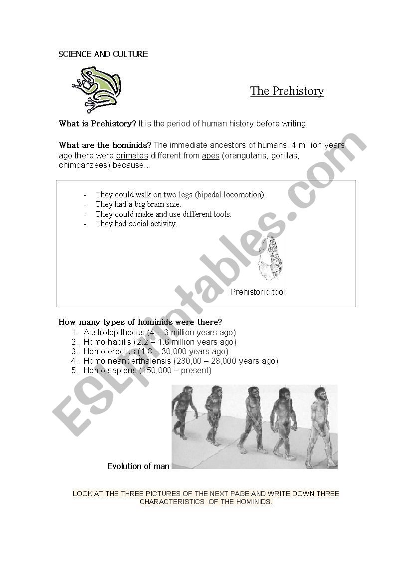 What is Prehistory? worksheet