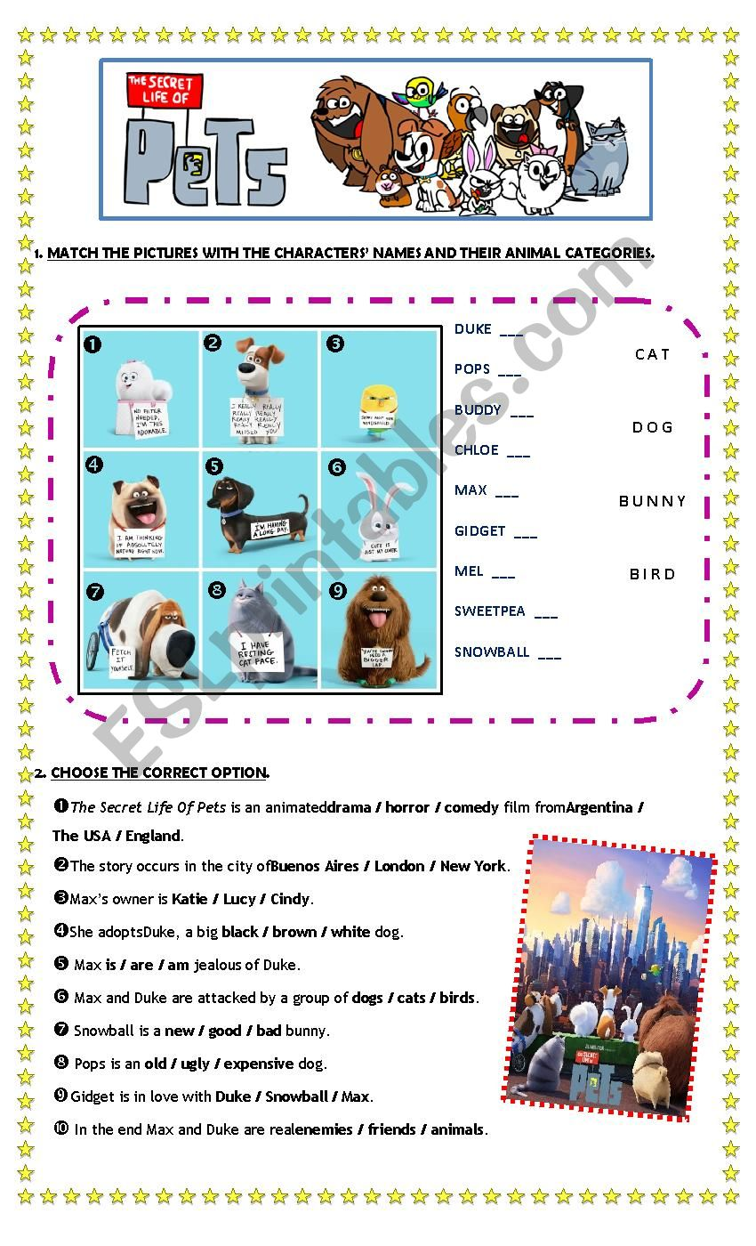 film the secret life of pets esl worksheet by roxmar. Black Bedroom Furniture Sets. Home Design Ideas