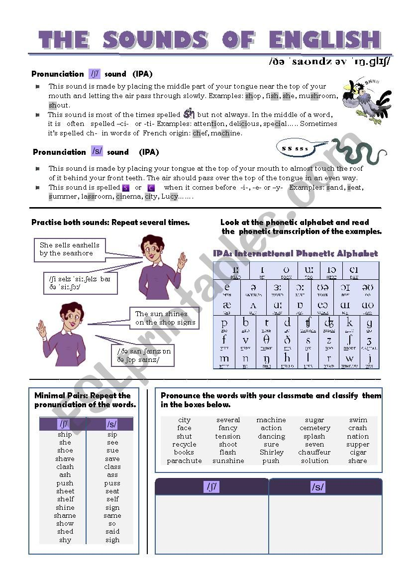 THE SOUNDS OF ENGLISH worksheet