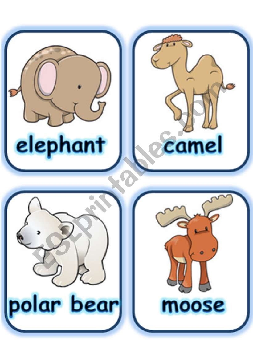 FLASHCARD SET 3- WILD ANIMALS - PART 3