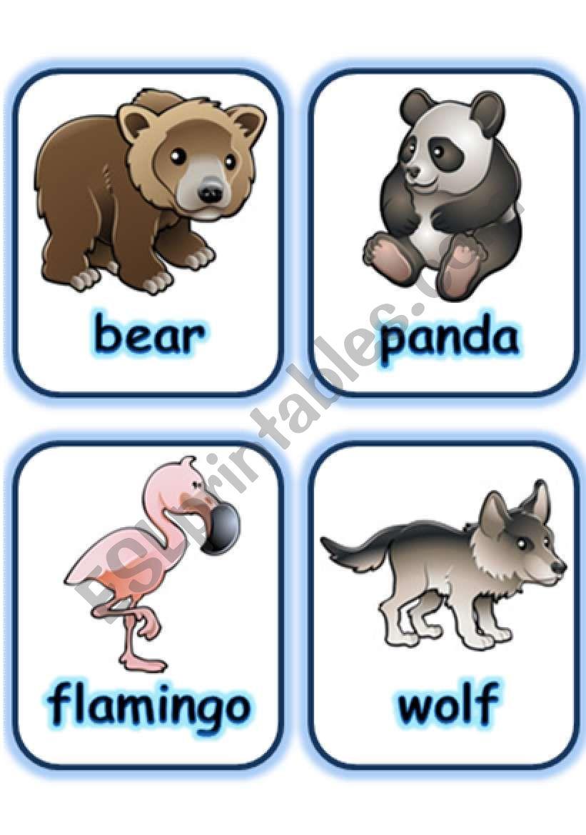 FLASHCARD SET 3- WILD ANIMALS - PART 4