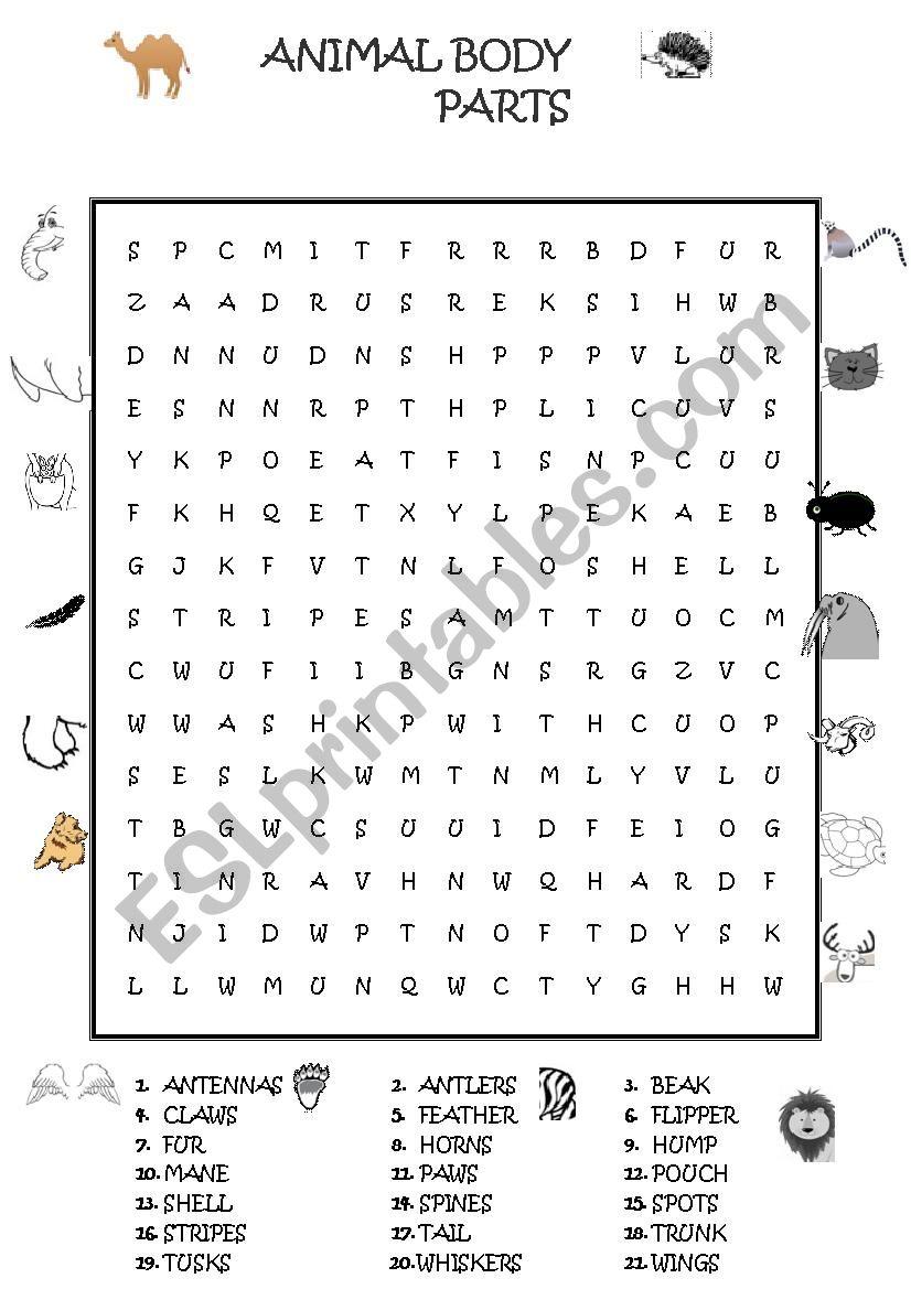 animal body parts wordsearch esl worksheet by guveri. Black Bedroom Furniture Sets. Home Design Ideas