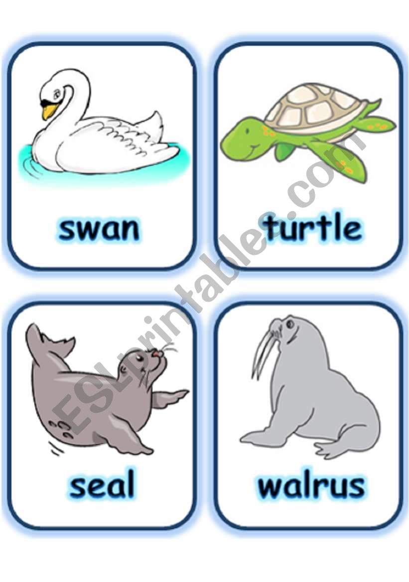 FLASHCARD SET 5- SEA ANIMALS AND CREATURES - PART 1 OF 3 (30.07.2008)