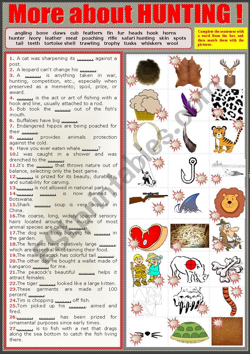 More about hunting.  Matching sentences to pics. + key