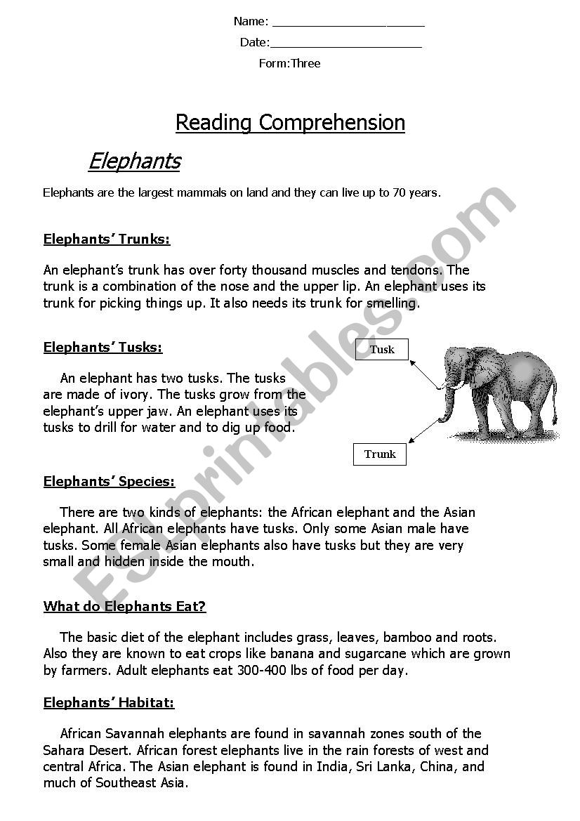 - Reading Comprehension ´Non-Chronological Report´ (Elephants) - ESL