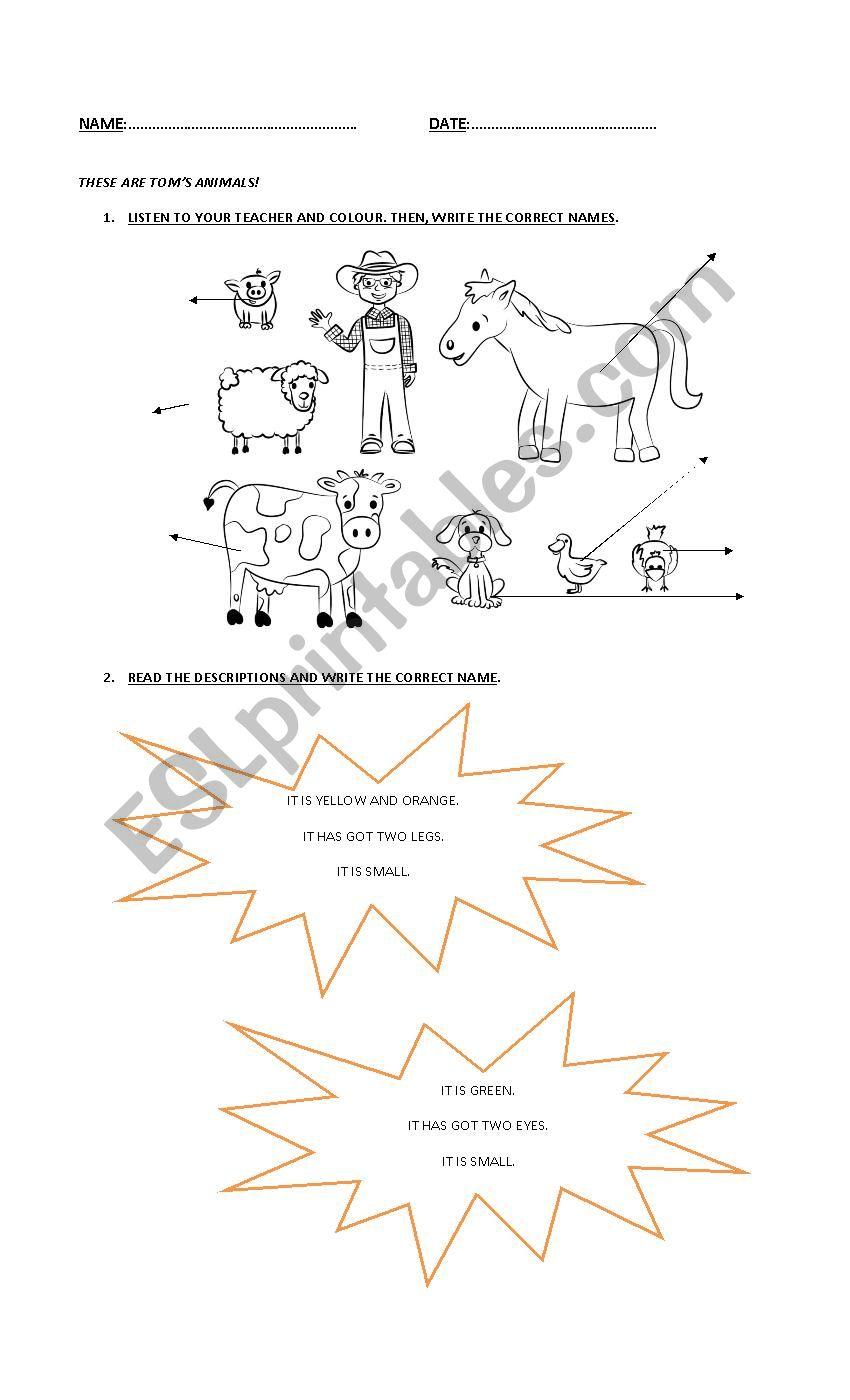 Animals! worksheet