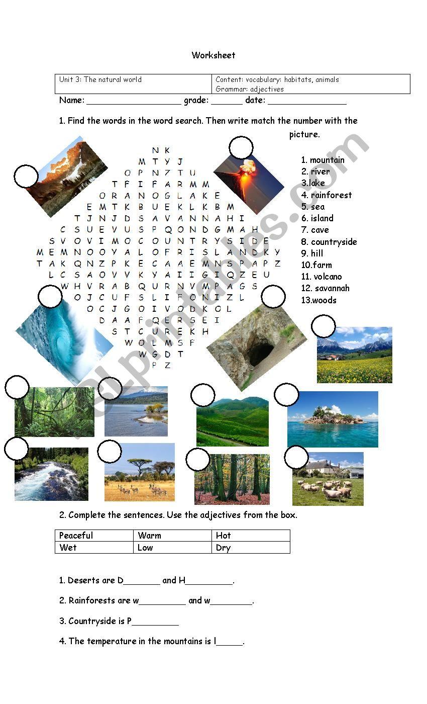 Habitats worksheet