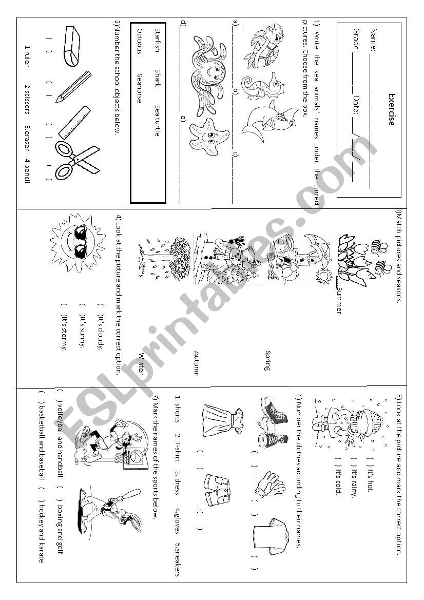 vocabulary review worksheet