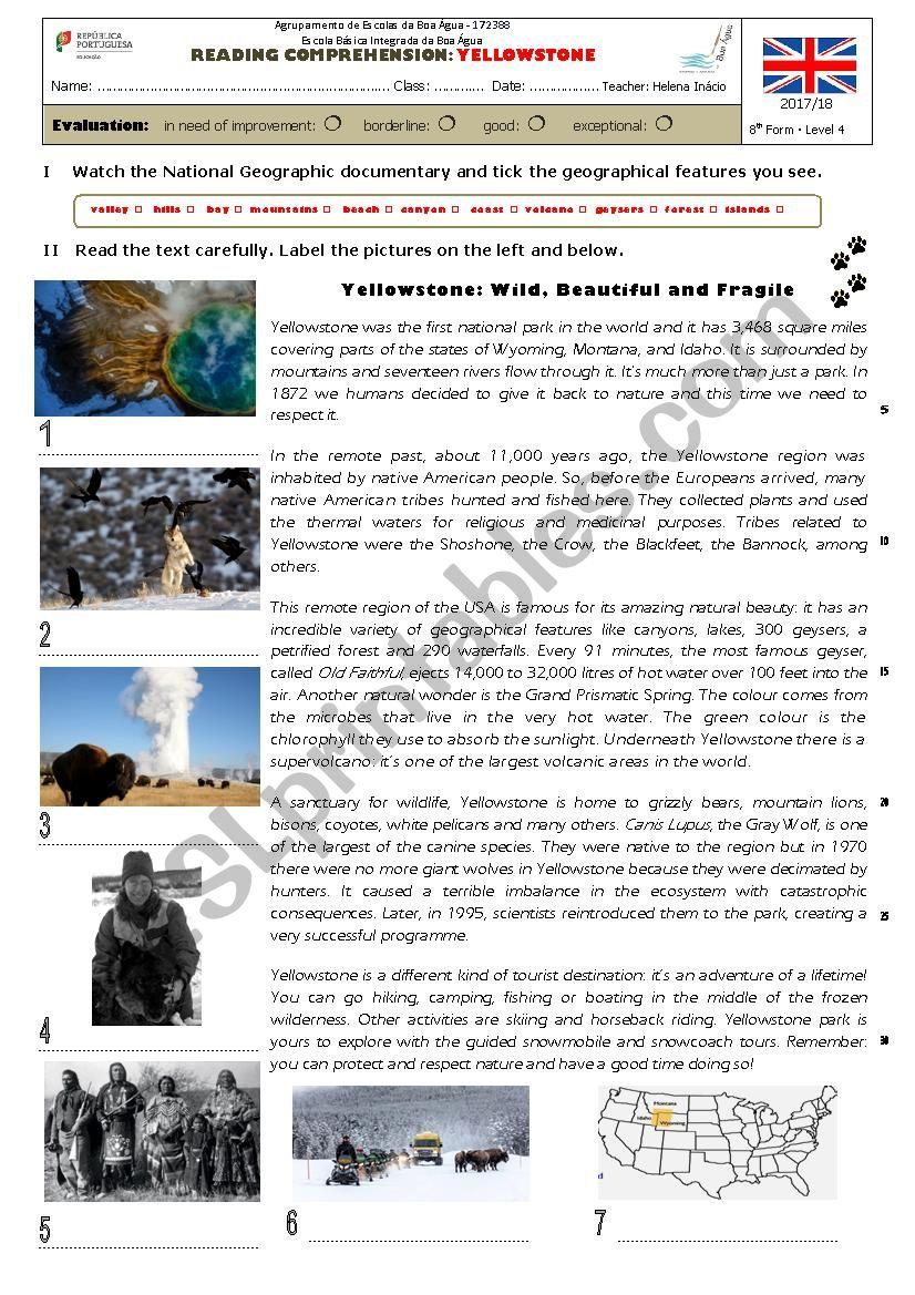 Yellowstone Park worksheet