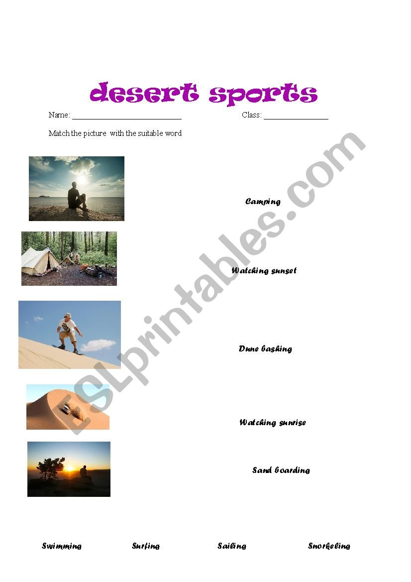 desert sport matching  worksheet